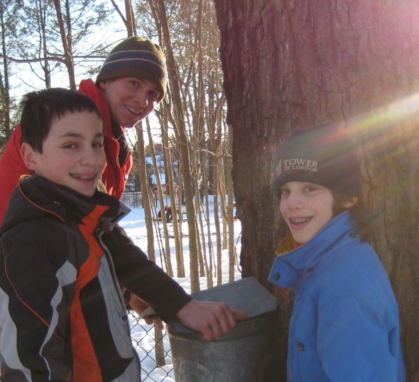 It's fun to collect sap!